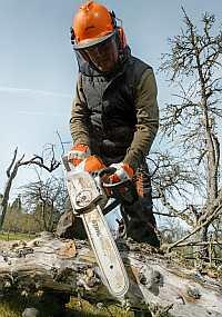 Macht viel Holz - die Akkusäge MSA 220 C
